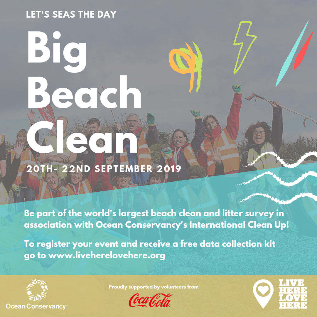 the big beach clean