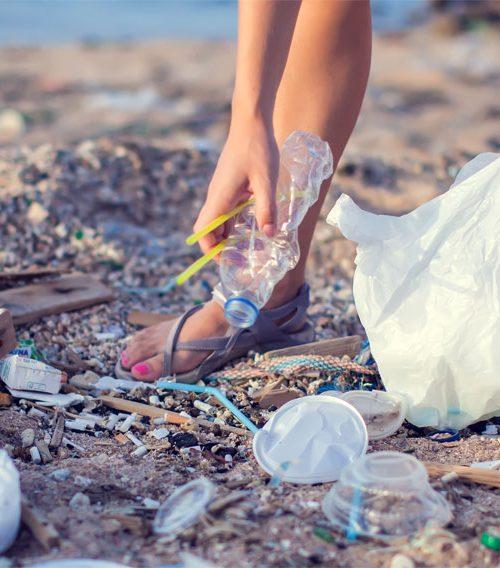 the big beach clean up